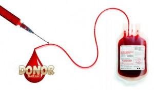 Puluhan Kantong Darah Di PMI Metro Tercemar