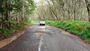 Jalan Rusak Menuju Gerbang Tol Menggala Sempat Jadi Perhatian Nunik