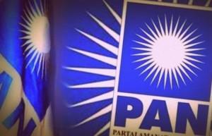 Lima Ketua DPD PAN Diberhentikan, Ini Sebabnya
