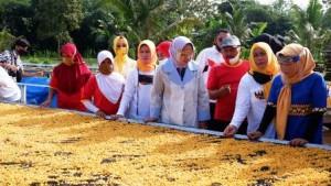 Baksos Di Pringsewu, Ketua TP PKK Lampung Serahkan Empat Piala