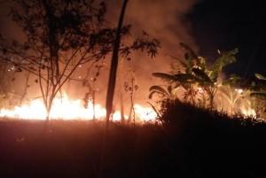 Lahan Kosong Di Telukbetung Utara Terbakar