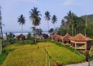 King's Hotel & Resort, Perpaduan Nuansa Alam Dalam Satu Tempat
