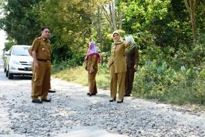 Nunik Tinjau Jalan Menuju Lokasi Festival Waykambas