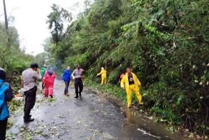 Jalan Muaradua-Liwa Tertutup Tanah Longsor, Lalu Lintas Macet