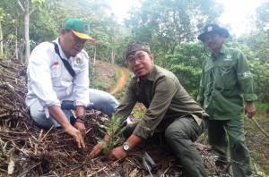 Petani Kelola 10 Hektare Hutan Di Register 39 Batutegi