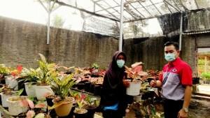 Bisnis Bibit Tanaman Via Online, Riani Raup Untung Di Tengah Pandemi