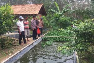 Fuad Minta Dinas Perikanan Mesuji Bina Pembudidaya Ikan