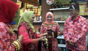 Dekranasda Lamsel Pamerkan Produk Pengrajin Di Inacraft 2019