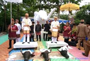 Bupati Waykanan Diberi Gelar Adat  <i>Sutan Mangku Prajatama</i>