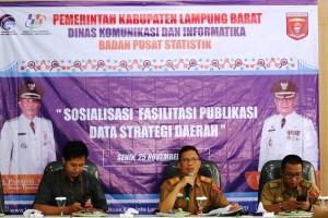 Lambar Sosialisasi Fasilitasi Publikasi Data Strategi Daerah