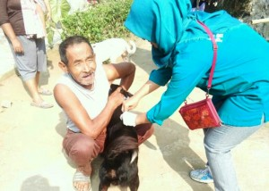 Puluhan Hewan Peliharaan Divaksinasi Rabies Di Tanggamus