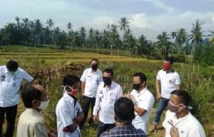 Pemkab Tanggamus Survei Lahan Calon SPBU Di Kampung Baru