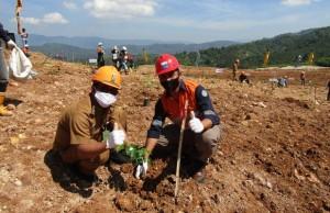 PT Natarang Mining Pulihkan Lahan Bekas Tambang