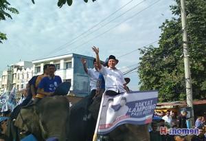 Parade Gajah Antarkan Mustafa Ke KPU