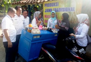Lomba BBGRM Tingkat Provinsi Lampung, Margomakmur Wakili Mesuji
