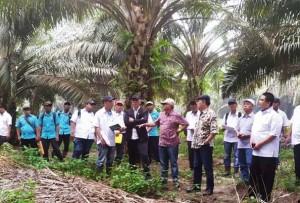Komisaris PTPN VII Kunjungi Unit Sungai Lengi