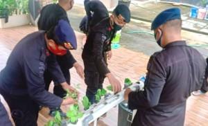 Anggota Brimob Lampung Simulasi Bertani Hidroponik