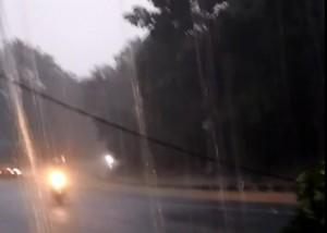 Banjir Dan Pohon Tumbang Melanda Bandarlampung