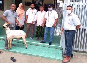 PG Cima Beri Bantuan Hewan Kurban 27 Ekor Kambing