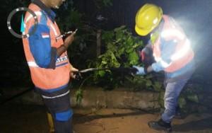 Jaringan Listrik Di Lokasi Bencana Segera Normal