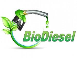 Ekspor Biodiesel Terancam Dikenakan  Pajak Tinggi