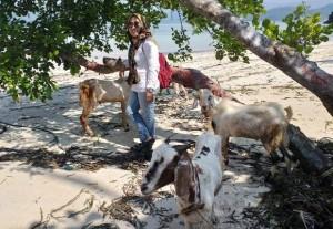 PKBM Pulau Tegal Berkurban Enam Kambing
