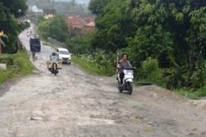 Jalan Rusak Di Palas, Pemkab Lamsel Diminta Tak Tutup Mata