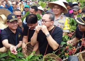 Ketua MPR Panen Kopi Di Lampung Barat