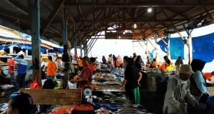 Pasokan Melimpah, Harga Ikan Tongkol Di Gudanglelang Turun