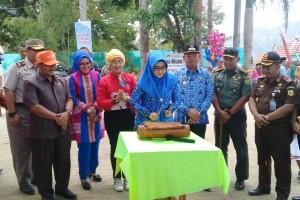 Festival Teluk Semaka 2019 Dimulai