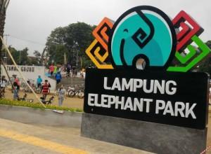 Taman Gajah Jadi Destinasi Wisata Di Bandarlampung